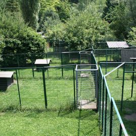 Tierklinik - Hundepension - Katzenpension - Kleintierpension - Gaaden